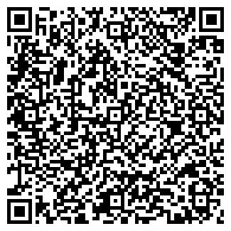 QR-код с контактной информацией организации Стей, ООО