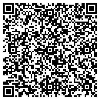 QR-код с контактной информацией организации Новый Бизнес