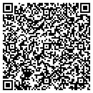 QR-код с контактной информацией организации Субъект предпринимательской деятельности Мой город