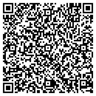 QR-код с контактной информацией организации Дворец, ЧП