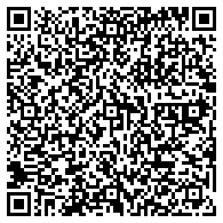 QR-код с контактной информацией организации Сальников, ЧП