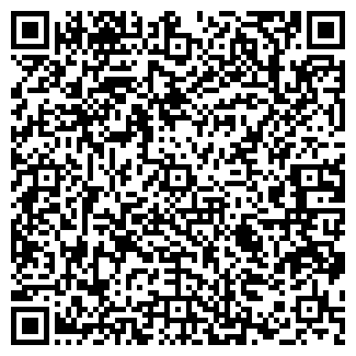 QR-код с контактной информацией организации Perfetto, ЧП