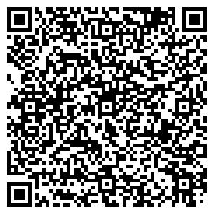 QR-код с контактной информацией организации Скеля, ЧП