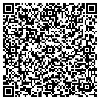 QR-код с контактной информацией организации Бистро, ИП