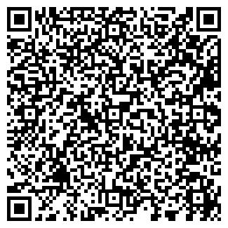 QR-код с контактной информацией организации NovyiDom, ЧП