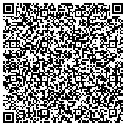 QR-код с контактной информацией организации VDL Agrotech B.V (Влд агротех б.в.), Представительство
