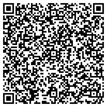 QR-код с контактной информацией организации ООО ДИНО-ПЛАНУНГ