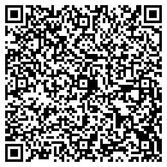 QR-код с контактной информацией организации Voltik, СПД