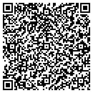 QR-код с контактной информацией организации Амира-Н, ЧП