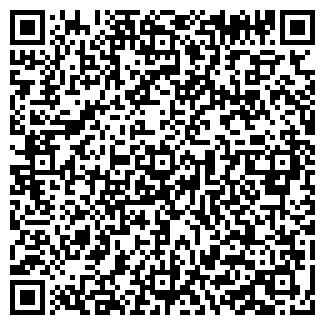 QR-код с контактной информацией организации eLuxus, ЧП