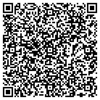 QR-код с контактной информацией организации E.V.S., Компания