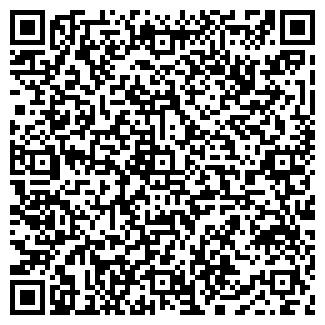 QR-код с контактной информацией организации ИП Гамезо В. А.