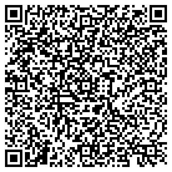 QR-код с контактной информацией организации Элси,ЧП