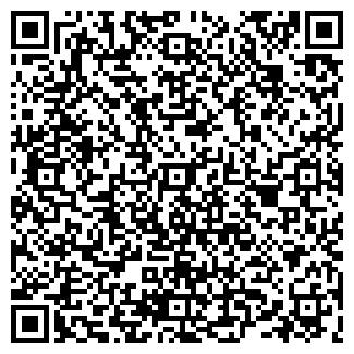 QR-код с контактной информацией организации Химич, ИП