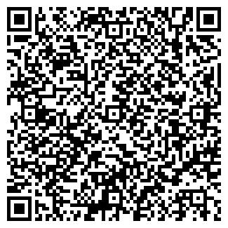 QR-код с контактной информацией организации Зинеко, ООО