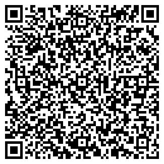 QR-код с контактной информацией организации Бинел, ООО