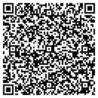QR-код с контактной информацией организации Санко, ООО