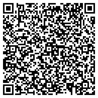 QR-код с контактной информацией организации BLGroup