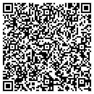 QR-код с контактной информацией организации ООО, Завод