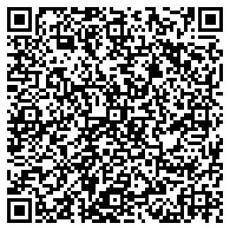 QR-код с контактной информацией организации Аронис Кодинг-Системы, ООО