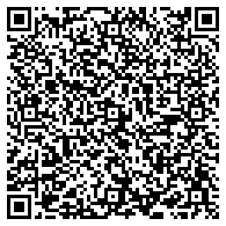 QR-код с контактной информацией организации Тиньков, ЧП