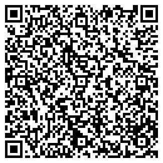 QR-код с контактной информацией организации Сфера ТД, ЗАО