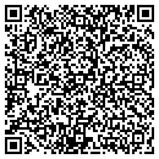 QR-код с контактной информацией организации Чолпанбаева, ИП