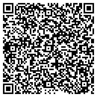 QR-код с контактной информацией организации Ручной Мир