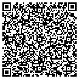 QR-код с контактной информацией организации Мини Cклад