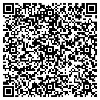 QR-код с контактной информацией организации СТЕЛС-СЕРВИС