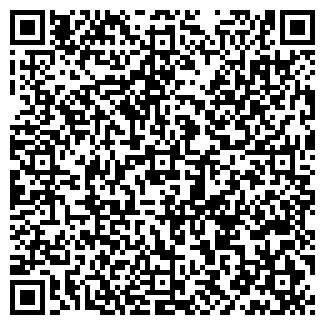 QR-код с контактной информацией организации Инфо, ЧП