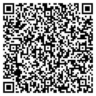 QR-код с контактной информацией организации ИП ALM