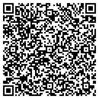 QR-код с контактной информацией организации Игар, ООО