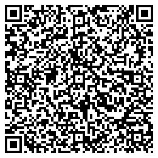 QR-код с контактной информацией организации Медиолайф, ЧП
