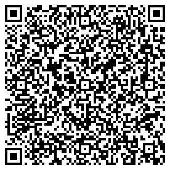 QR-код с контактной информацией организации Зир, ООО