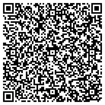 QR-код с контактной информацией организации Алексеева НВ, ЧП
