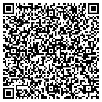 QR-код с контактной информацией организации ШИНЫ И ДИСКИ