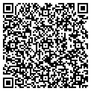 QR-код с контактной информацией организации Нано патч, ИП