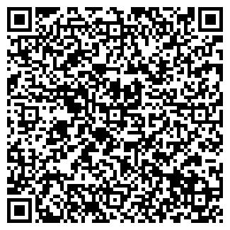 QR-код с контактной информацией организации Тенгеш, ИП