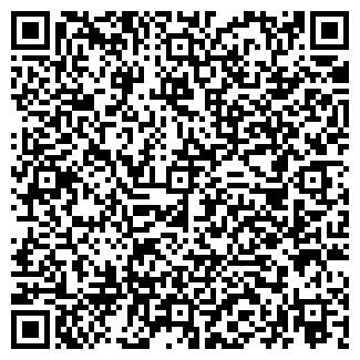 QR-код с контактной информацией организации ИП AbdylHafiz