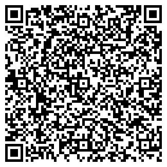 QR-код с контактной информацией организации Искандер, ИП