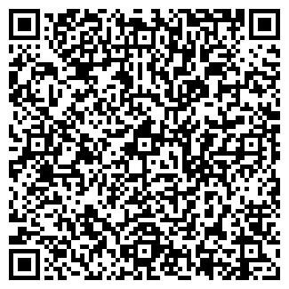QR-код с контактной информацией организации ИП Борисенок, Другая