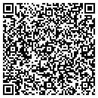 QR-код с контактной информацией организации ИП Абдильдин
