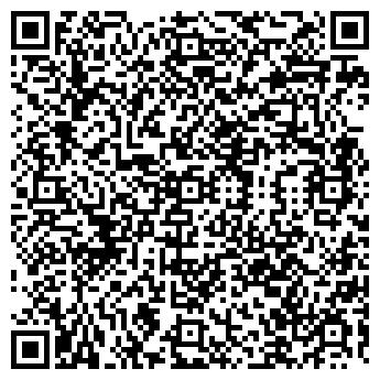 QR-код с контактной информацией организации СВЕТСКАЯ ЛЬВИЦА