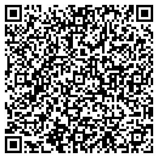 QR-код с контактной информацией организации ИП БИГАЛИЕВ Т.И.