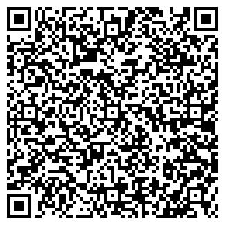 QR-код с контактной информацией организации ИП КАРАЕВА В.В.
