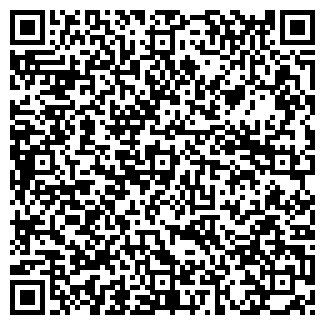 QR-код с контактной информацией организации ИП ОРЛОВ В.М.