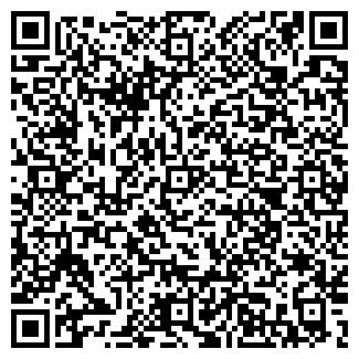 QR-код с контактной информацией организации Аrtissnow