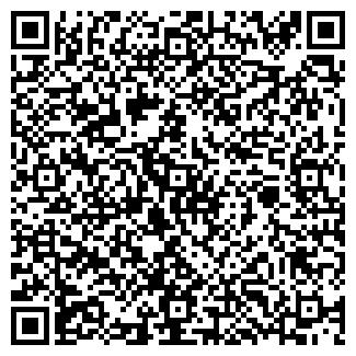 QR-код с контактной информацией организации Dilux