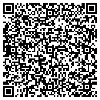QR-код с контактной информацией организации АЛАЙ, ООО